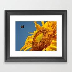 Mr. Yellow Britches Framed Art Print