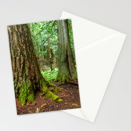 Trail of the Cedars Stationery Cards