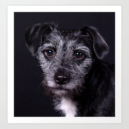 Pop the Dog Art Print
