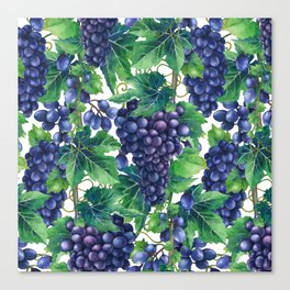 Watrercolor grapes Canvas Print