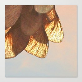 Cluster of lightened leaves Canvas Print