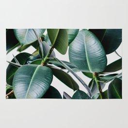 Tropical Elastica Rug
