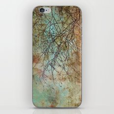 For the love of trees - textured photography iPhone & iPod Skin