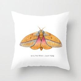 Bisected Honey Locust Moth (Sphingicampa bisecta) Throw Pillow