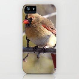 Madame cardinal 2020 iPhone Case
