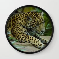 jaguar Wall Clocks featuring  Jaguar  by Darren Wilkes Fine Art Images