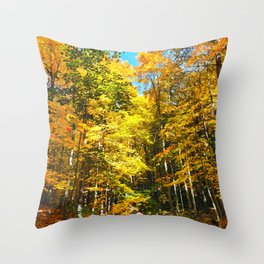 Dry Autumn River Bed Throw Pillow