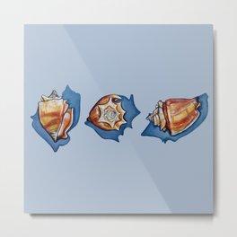 Three Seashells in Blue Metal Print