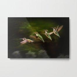 Humming Bird in Flight Metal Print