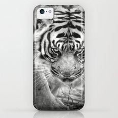 Tiger Tiger iPhone 5c Slim Case