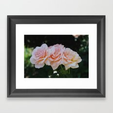 In the Pink Framed Art Print