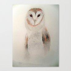 Owl in the fog Canvas Print
