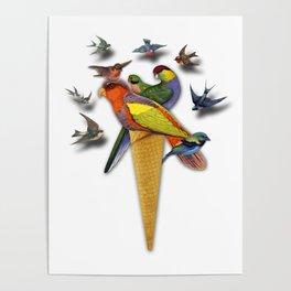BIRDS ICE CREAM Poster