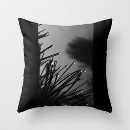 Quintessence Throw Pillow