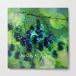One Day At A Time . . . Metal Print