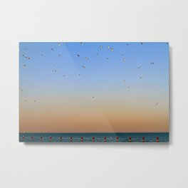 Seagulls Over Lake Michigan Metal Print