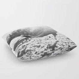 Freedom Floor Pillow