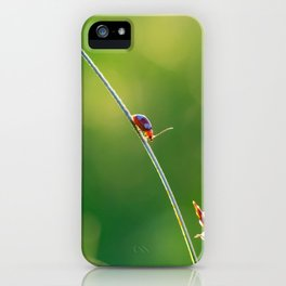 Little red bug perching on grass iPhone Case