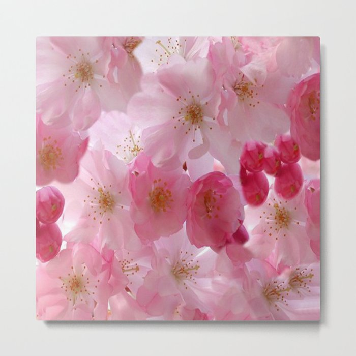 Delicate Cherry Blossoms Metal Print