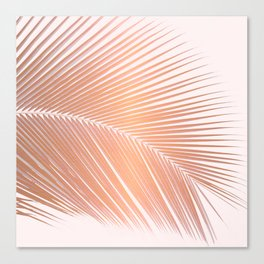 Palm leaf - copper pink Canvas Print