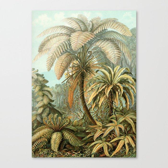 Vintage Tropical Palm Leinwanddruck