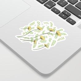 Daisy Wildflower Botanical Nature Pattern Sticker
