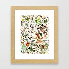 Biology one-o-one Framed Art Print
