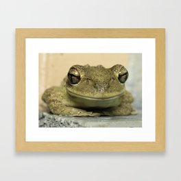 Smiling frog Framed Art Print