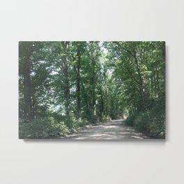 Country Road #1 Metal Print
