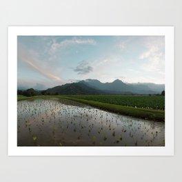 Hawaii 2 8x24 Art Print