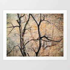 Natures Abstract Art Print