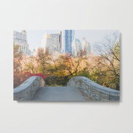 Central Park as the City Wakes Up Metal Print