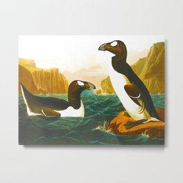 Great Auk John James Audubon Scientific Birds Of America Illustration Metal Print