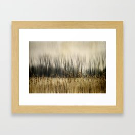 Marsh Edge Framed Art Print