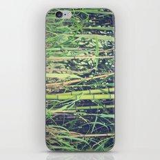 Ubiquitous Bamboo iPhone & iPod Skin