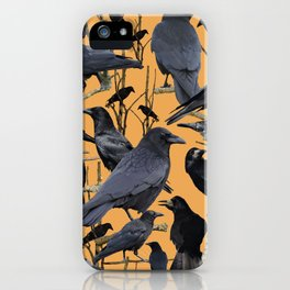 Crow | Corvidae iPhone Case