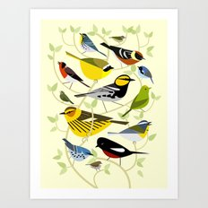 New World Warblers 3 Art Print