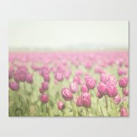 tulip Canvas Prints featuring Tulip by Pure Nature Photos