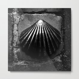 shot on iphone .. bronze shell Metal Print