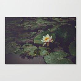 Pagoda Blossom Canvas Print