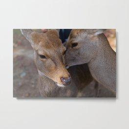 Deer Secrets Metal Print