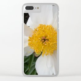 White Beauty by Teresa Thompson Clear iPhone Case