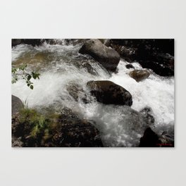 A Place to Contemplate, on Fall Creek Canvas Print
