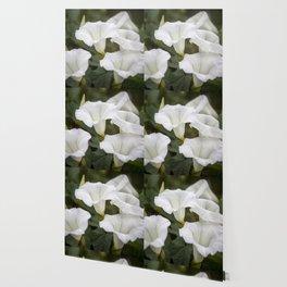 White Bells Wallpaper