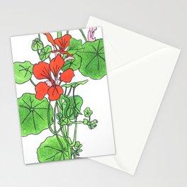 Nasturtiums Visited Stationery Cards