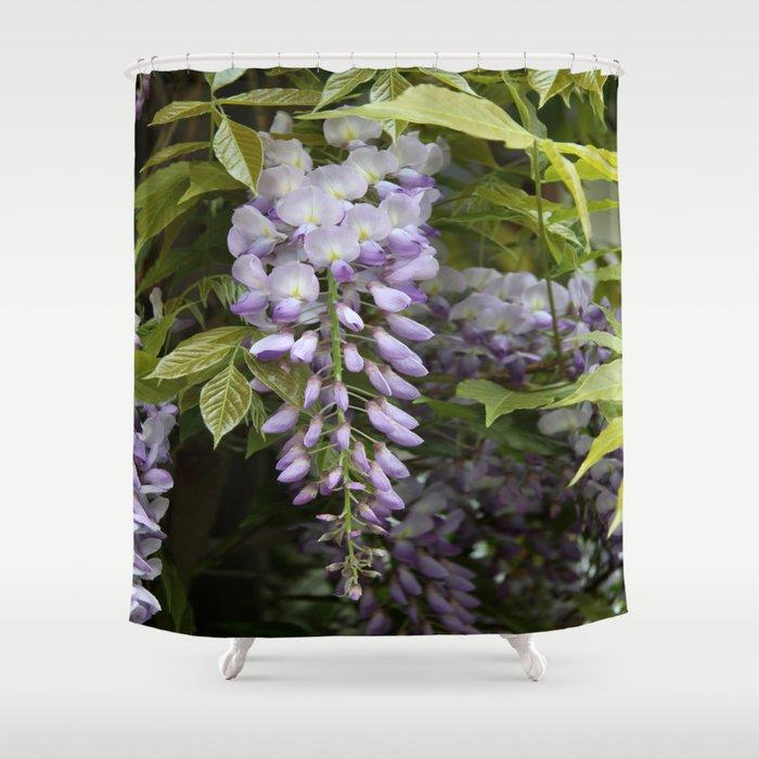 Wisteria Shower Curtain By Christianeschulze