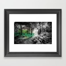 Forest Trees Framed Art Print