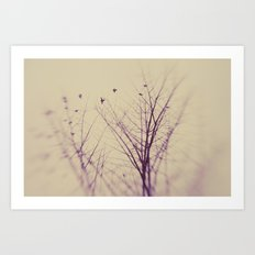 The Purity Of Spring Art Print