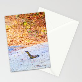Goanna on a road in Australia Stationery Cards
