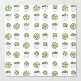 Green and pink suculents in flowerpots Canvas Print